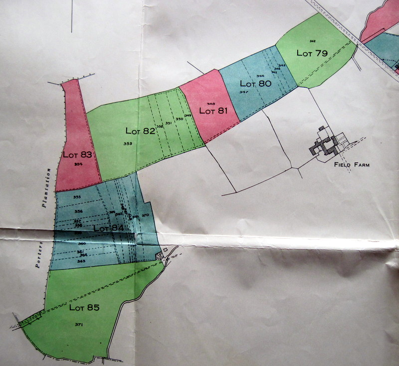 Map 2 – Detail of Lots in the South-Western part of the village.