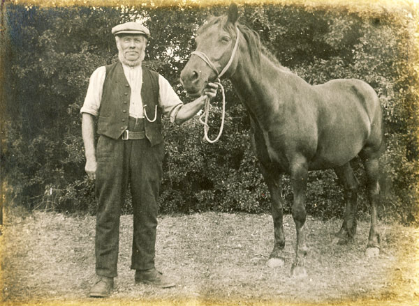 Elias Charles Walters (Lot 46 & 48) who rented the pasture known as 'Sally Close'.
