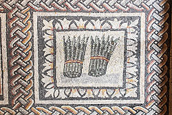 A Roman floor mosaic showing two rounds of asparagus.