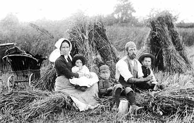 This charming photograph, taken in the late 1880s in the cornfields, shows the Bayliss family (Enos is the child in the middle, between his parents).