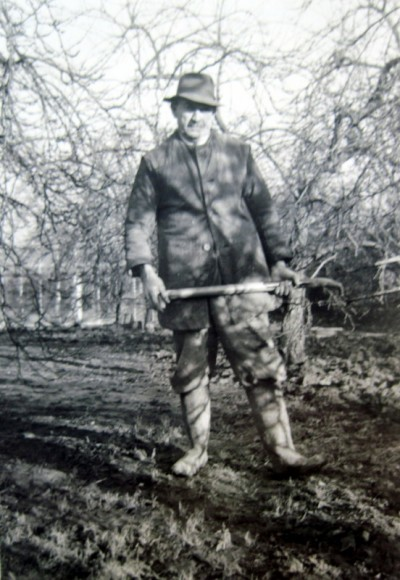 Fred Martin's heavy clay soil could be difficult to dig, so a two-tined fork was the tool of choice.