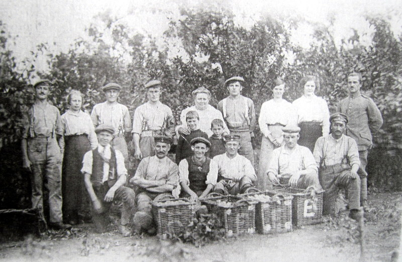 This picture was taken during the Great War and shows some of the Martin family and the German prisoners-of-war they had to help with the fruit harvest.