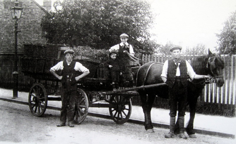 Charles Martin junior leading the horse with his brother, Fred, holding the reins.