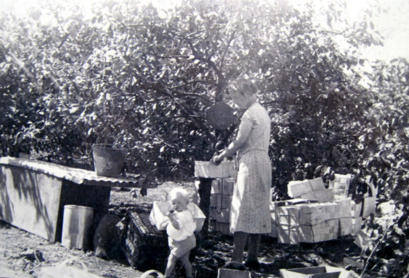 Taken in 1933, this is Fred Martin's wife. Emma, and first daughter, Marjorie, during fruit picking.
