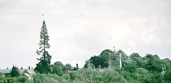 Flags fly from the tree and the church for the Silver Jubilee in June 1977.