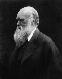 Charles Robert Darwin (1809-1882), naturalist and geologist