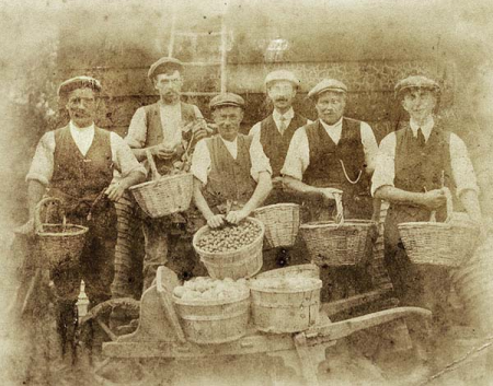 The ladder suggests these men have been picking plums and damsons. Left to right: Charles Mason of 32 Pitchers Hill, Arthur Davis, John Field of 71 Pitchers Hill, unknown, John Newbury, unknown.