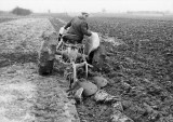 Freddie Padfield ploughing with a Ferguson